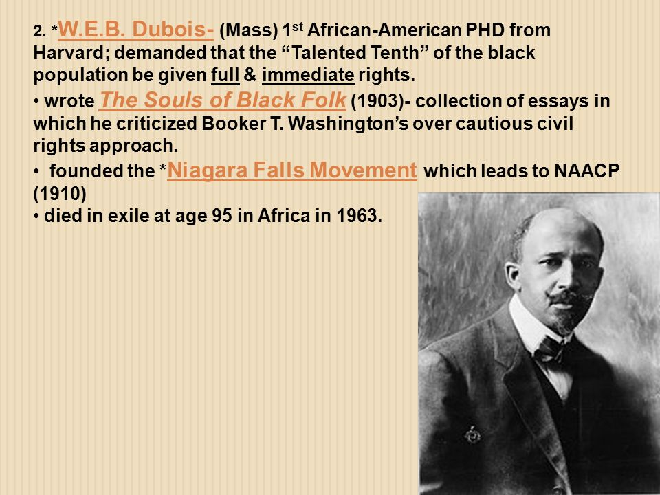 web dubois essay papers The souls of black folk study guide contains a biography of web du bois, literature essays, a complete e-text, quiz questions, major themes, characters, and a.