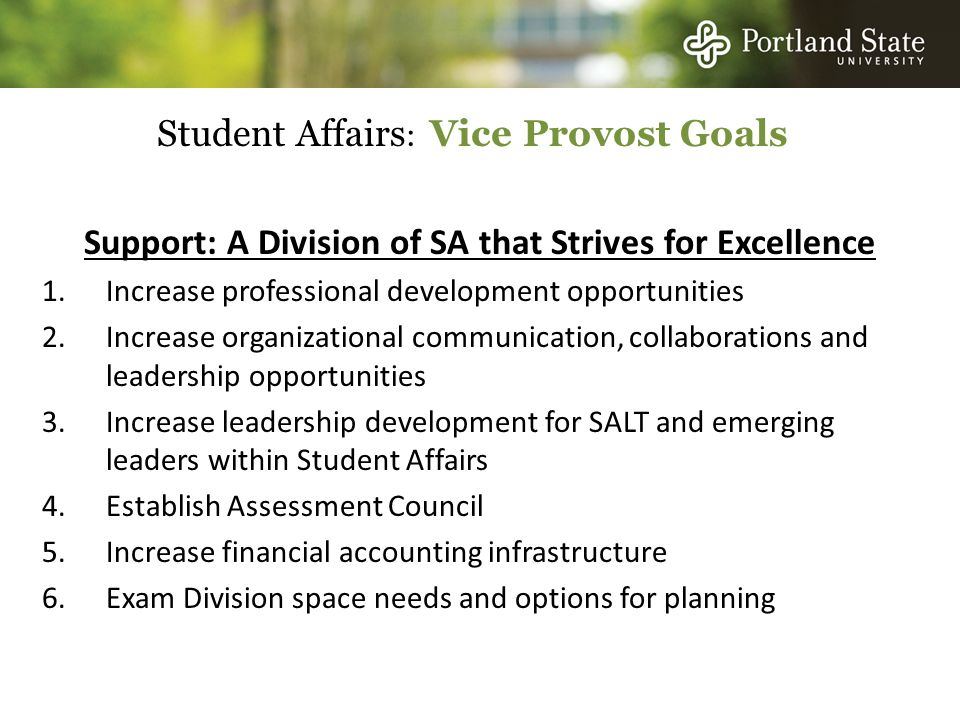 Student Affairs : Vice Provost Goals Support: A Division of SA that Strives for Excellence 1.Increase professional development opportunities 2.Increase organizational communication, collaborations and leadership opportunities 3.Increase leadership development for SALT and emerging leaders within Student Affairs 4.Establish Assessment Council 5.Increase financial accounting infrastructure 6.Exam Division space needs and options for planning