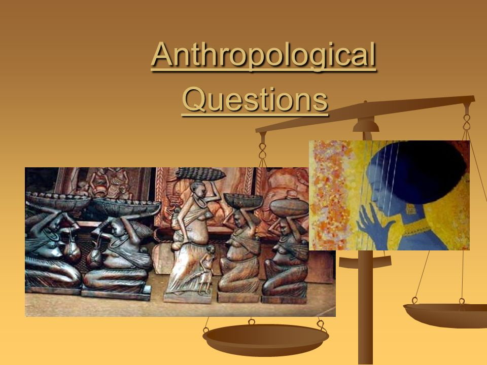 Questions about Anthropology?