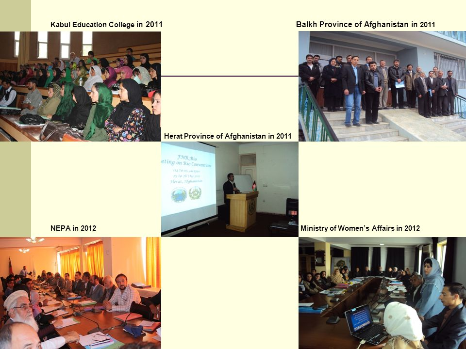 Kabul Education College in 2011 Balkh Province of Afghanistan in 2011 Herat Province of Afghanistan in 2011 NEPA in 2012 Ministry of Women's Affairs in 2012