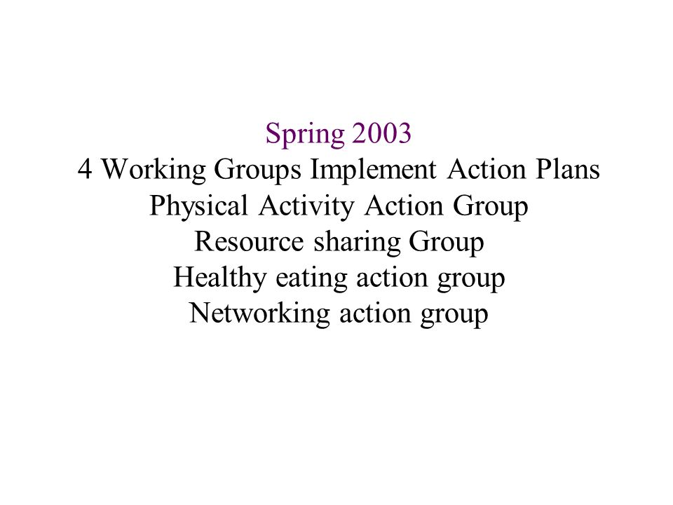 Spring Working Groups Implement Action Plans Physical Activity Action Group Resource sharing Group Healthy eating action group Networking action group