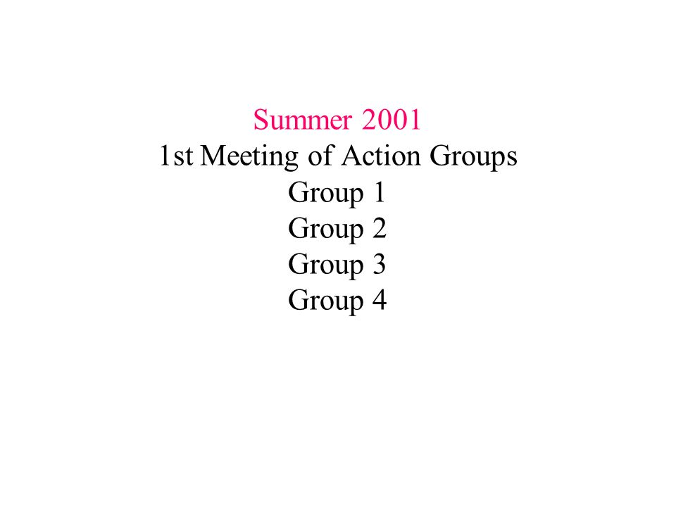 Summer st Meeting of Action Groups Group 1 Group 2 Group 3 Group 4