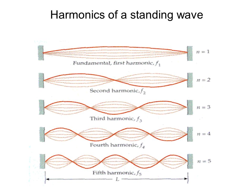 Harmonics of a standing wave