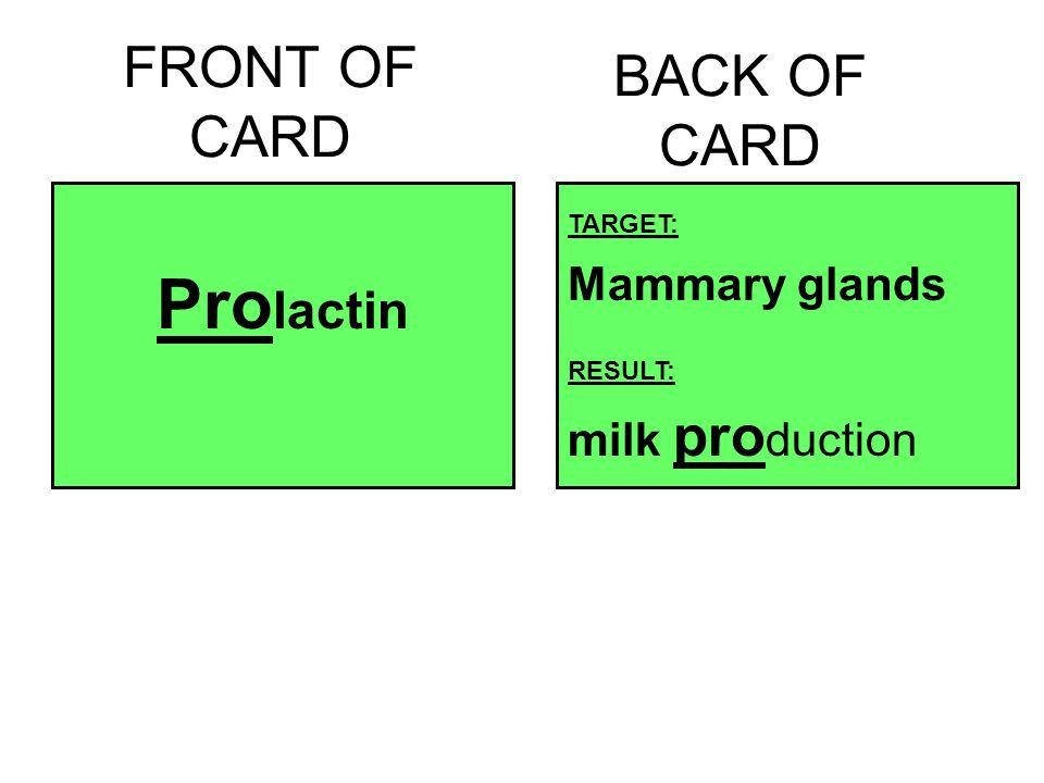 FRONT OF CARD Pro lactin BACK OF CARD TARGET: Mammary glands RESULT: milk pro duction