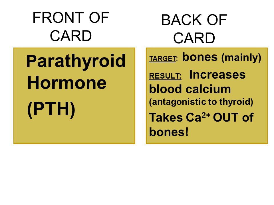 FRONT OF CARD P arathyroid Hormone (PTH) BACK OF CARD TARGET: bones (mainly) RESULT: Increases blood calcium (antagonistic to thyroid) Takes Ca 2+ OUT of bones!
