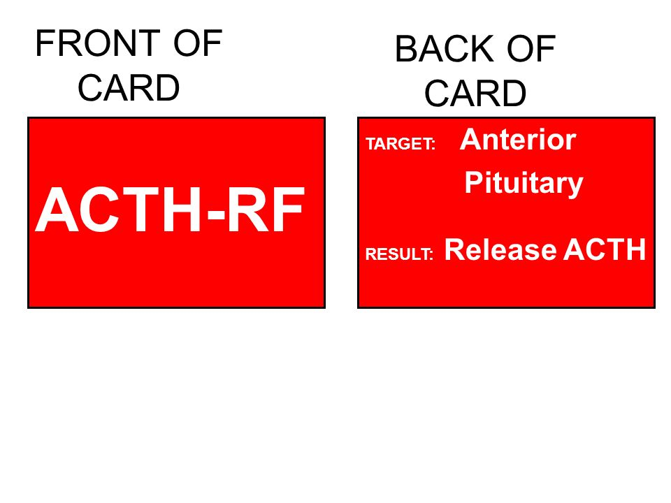FRONT OF CARD ACTH-RF BACK OF CARD TARGET: Anterior Pituitary RESULT: Release ACTH