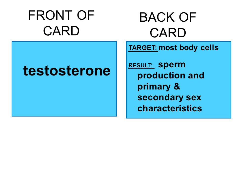 FRONT OF CARD testosterone BACK OF CARD TARGET: most body cells RESULT: sperm production and primary & secondary sex characteristics