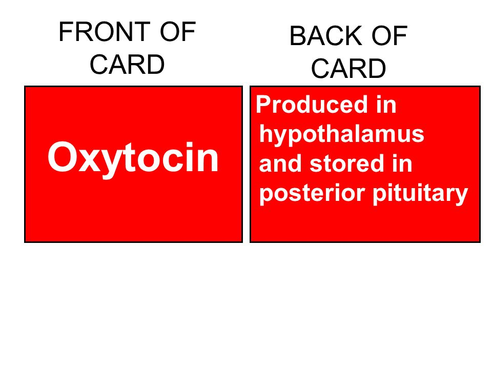 FRONT OF CARD Oxytocin BACK OF CARD Produced in hypothalamus and stored in posterior pituitary