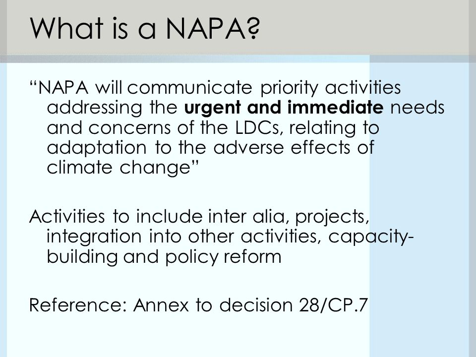 What is a NAPA.