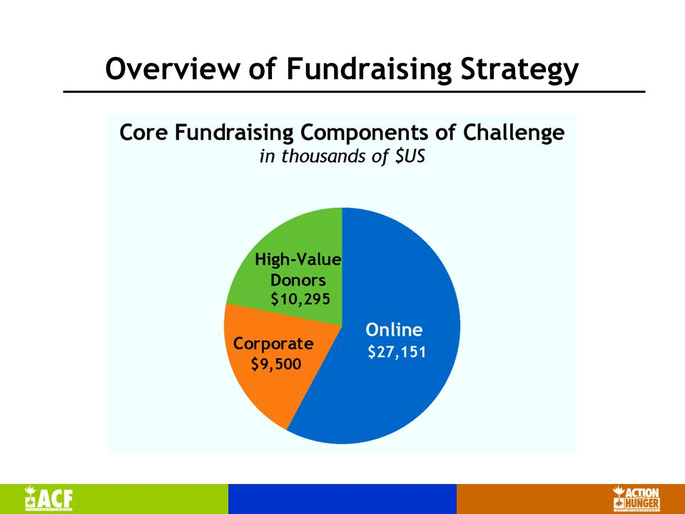 Overview of Fundraising Strategy