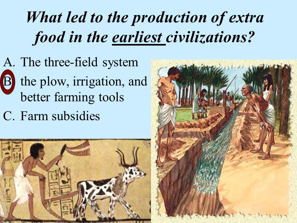 How did fire and tools lead to civilization?