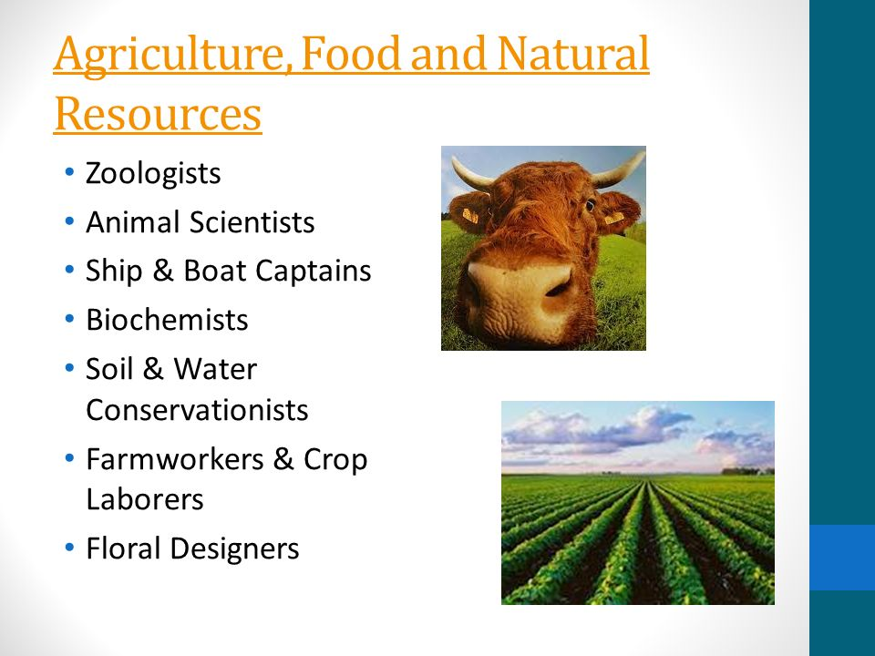 Agriculture, Food and Natural Resources Zoologists Animal Scientists Ship & Boat Captains Biochemists Soil & Water Conservationists Farmworkers & Crop Laborers Floral Designers
