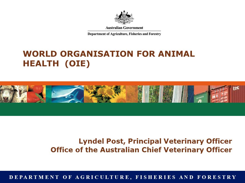 D E P A R T M E N T O F A G R I C U L T U R E, F I S H E R I E S A N D F O R E S T R Y WORLD ORGANISATION FOR ANIMAL HEALTH (OIE) Lyndel Post, Principal Veterinary Officer Office of the Australian Chief Veterinary Officer