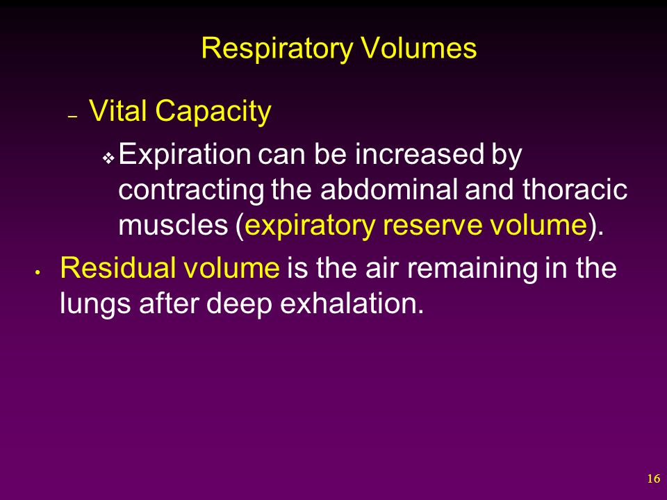 16 Respiratory Volumes – Vital Capacity  Expiration can be increased by contracting the abdominal and thoracic muscles (expiratory reserve volume).