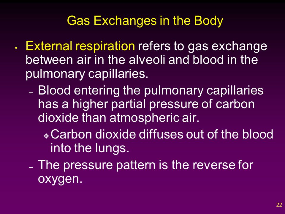 22 Gas Exchanges in the Body External respiration refers to gas exchange between air in the alveoli and blood in the pulmonary capillaries.