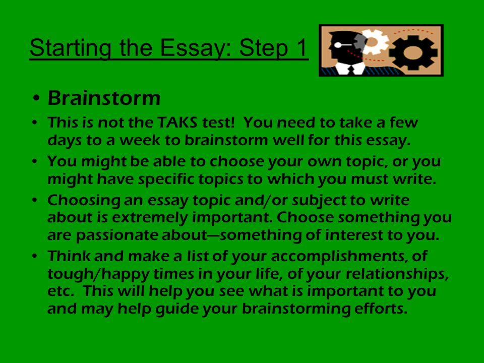 Professional College Application Essay Writers Workshop - image 5