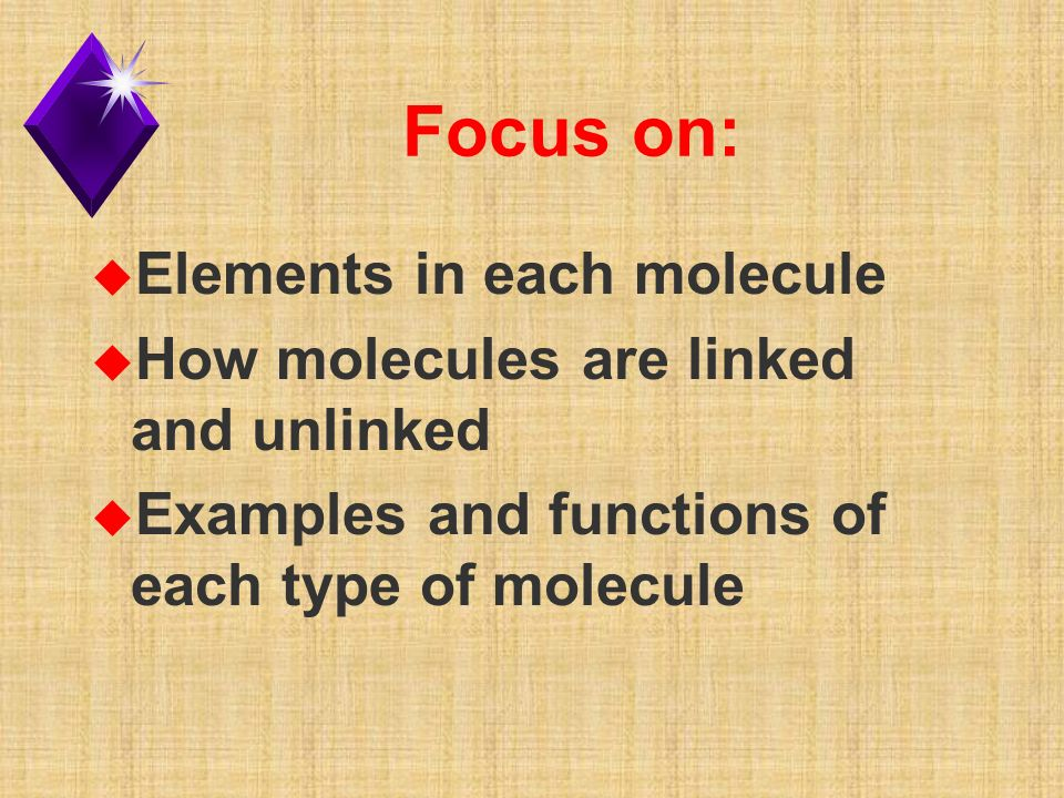 Focus on: u Elements in each molecule u How molecules are linked and unlinked u Examples and functions of each type of molecule