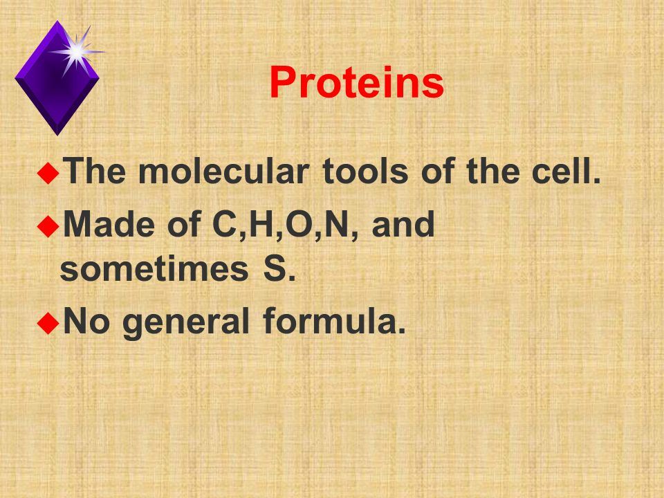 Proteins u The molecular tools of the cell. u Made of C,H,O,N, and sometimes S.