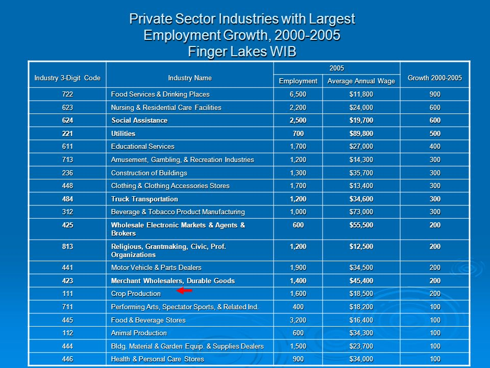 Private Sector Industries with Largest Employment Growth, Finger Lakes WIB Industry 3-Digit Code Industry Name 2005 Growth Employment Average Annual Wage 722 Food Services & Drinking Places 6,500$11, Nursing & Residential Care Facilities 2,200$24, Social Assistance 2,500$19, Utilities700$89, Educational Services 1,700$27, Amusement, Gambling, & Recreation Industries 1,200$14, Construction of Buildings 1,300$35, Clothing & Clothing Accessories Stores 1,700$13, Truck Transportation 1,200$34, Beverage & Tobacco Product Manufacturing 1,000$73, Wholesale Electronic Markets & Agents & Brokers 600$55, Religious, Grantmaking, Civic, Prof.