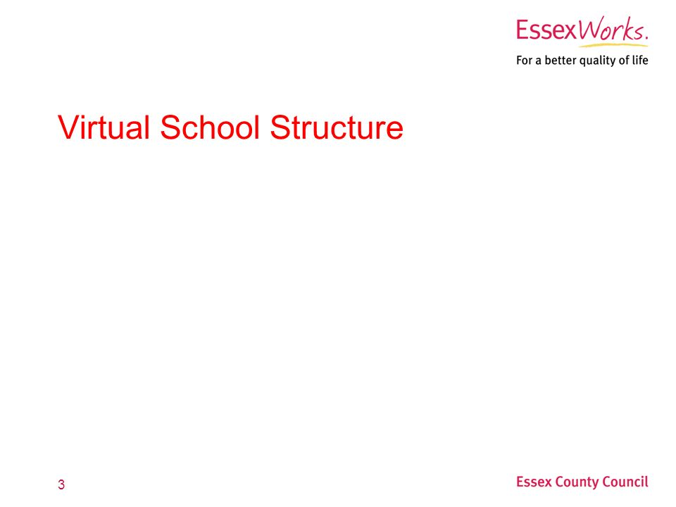 3 Virtual School Structure