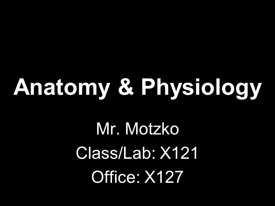 Human Anatomy & Physiology Semester 2 Period 4 Back of Room ...