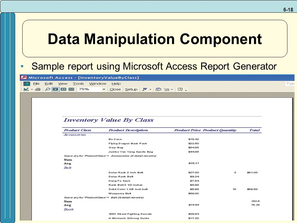6-18 Data Manipulation Component Sample report using Microsoft Access Report Generator