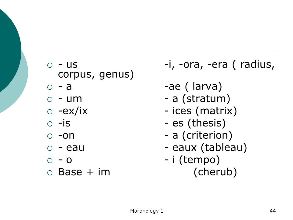 Plural For Thesis