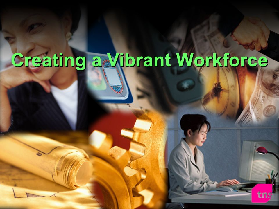 Creating a Vibrant Workforce