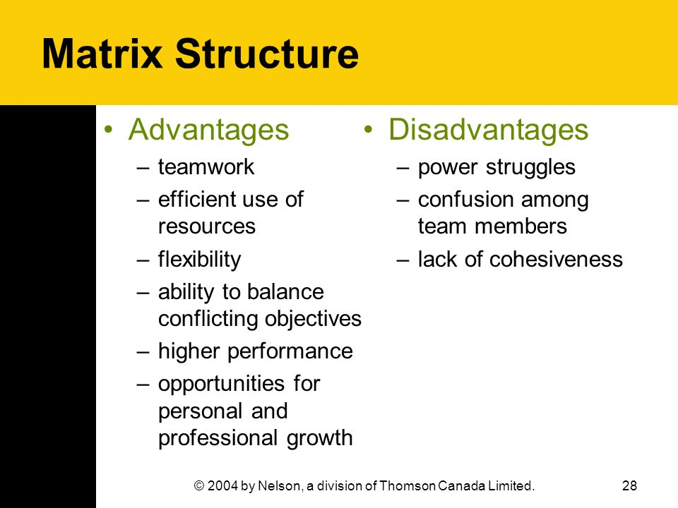 28© 2004 by Nelson, a division of Thomson Canada Limited. Matrix Structure Advantages –teamwork –efficient use of resources –flexibility –ability to b
