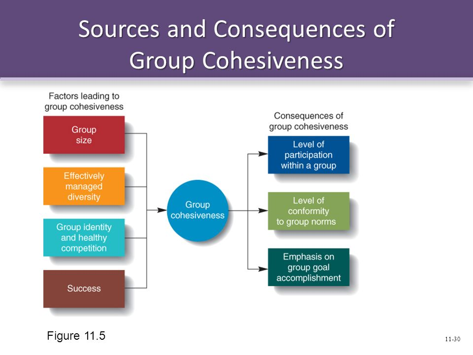 Sources and Consequences of Group Cohesiveness Figure 11.5 11-30