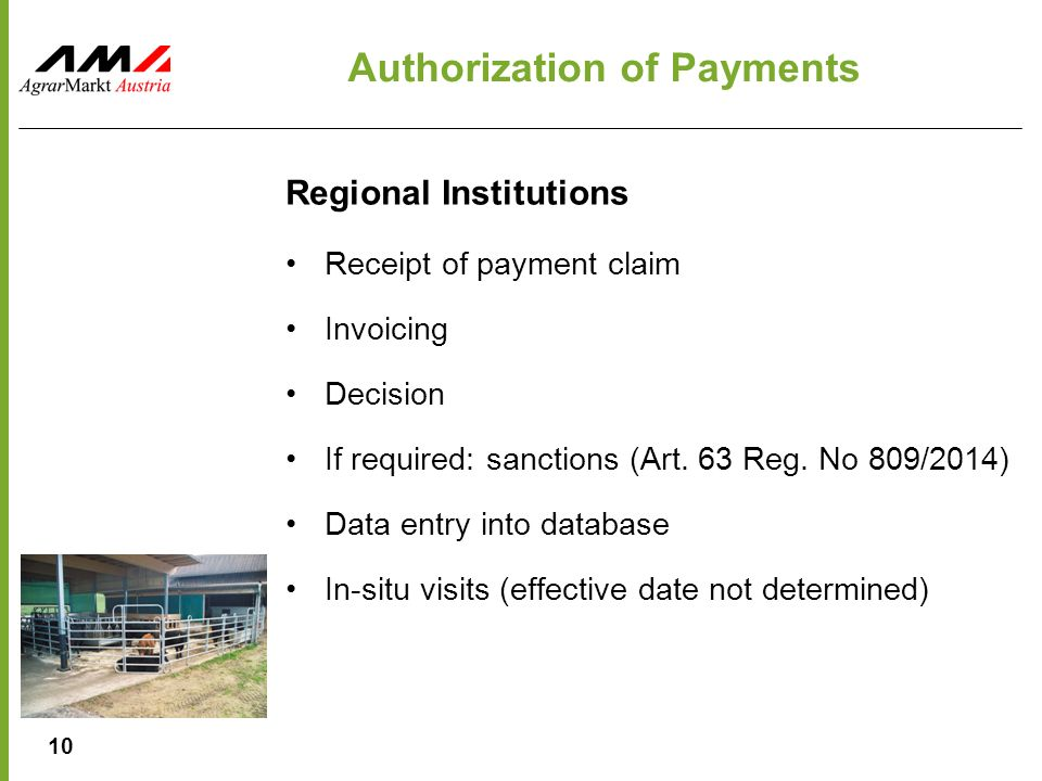 10 Authorization of Payments Regional Institutions Receipt of payment claim Invoicing Decision If required: sanctions (Art.
