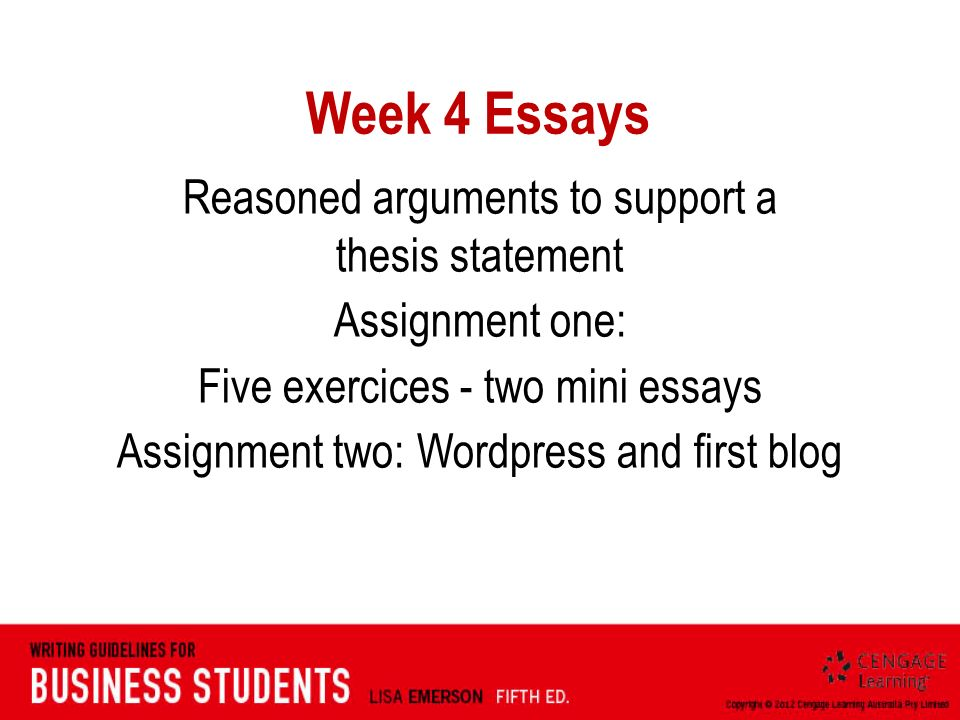 essay assignment 4
