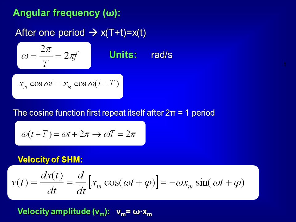 Angular frequency (ω): After one period  x(T+t)=x(t) The cosine function first repeat itself after 2π = 1 period rad/sUnits: Velocity of SHM: Velocity amplitude (v m ): v m = ω·x m t
