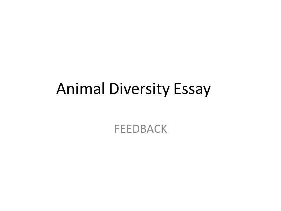animal diversity essay feedback describe briefly in one sentence  1 animal diversity essay feedback