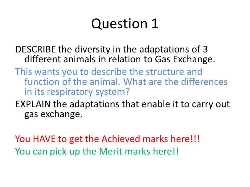 animal diversity essay feedback describe briefly in one sentence  3 question