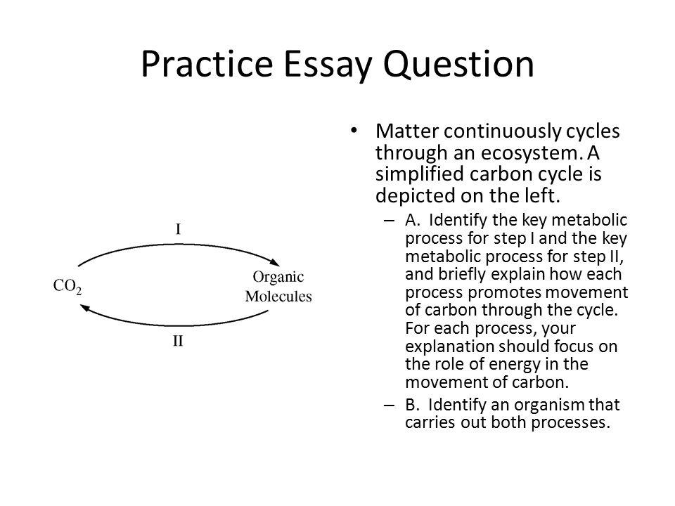 carbon essay nmctoastmasters