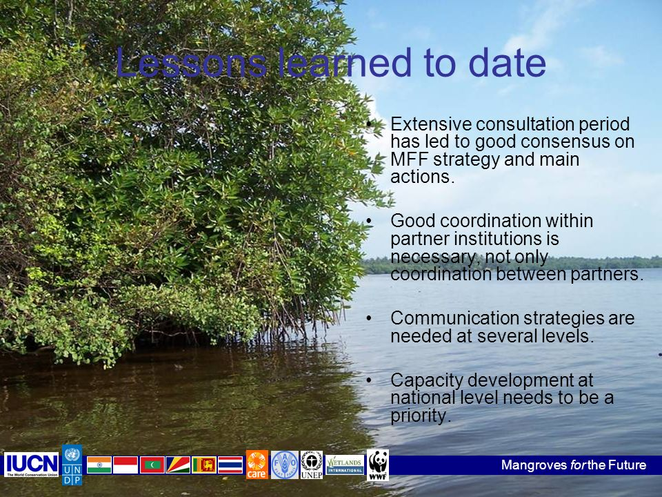 Mangroves for the Future Lessons learned to date Extensive consultation period has led to good consensus on MFF strategy and main actions.