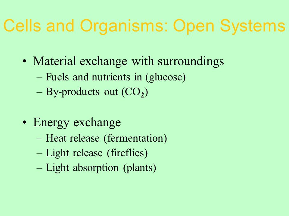 Cells and Organisms: Open Systems Material exchange with surroundings –Fuels and nutrients in (glucose) –By-products out (CO 2 ) Energy exchange –Heat release (fermentation) –Light release (fireflies) –Light absorption (plants)