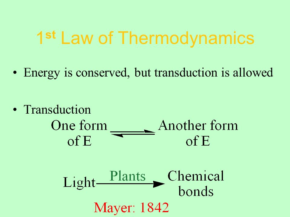 1 st Law of Thermodynamics Energy is conserved, but transduction is allowed Transduction