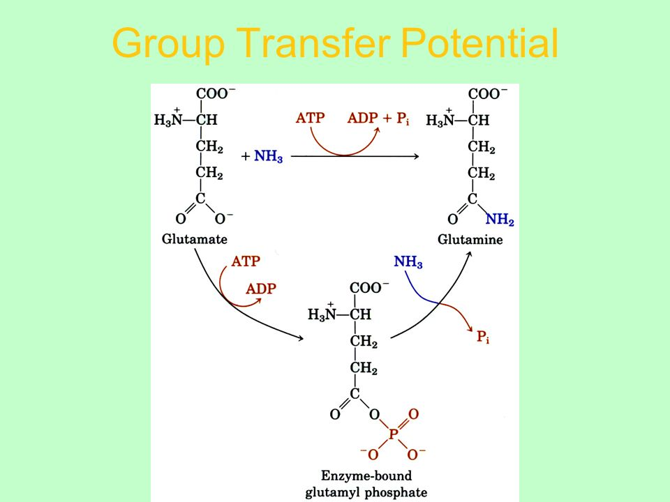 Group Transfer Potential