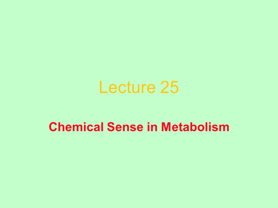 Lecture 25 Chemical Sense in Metabolism
