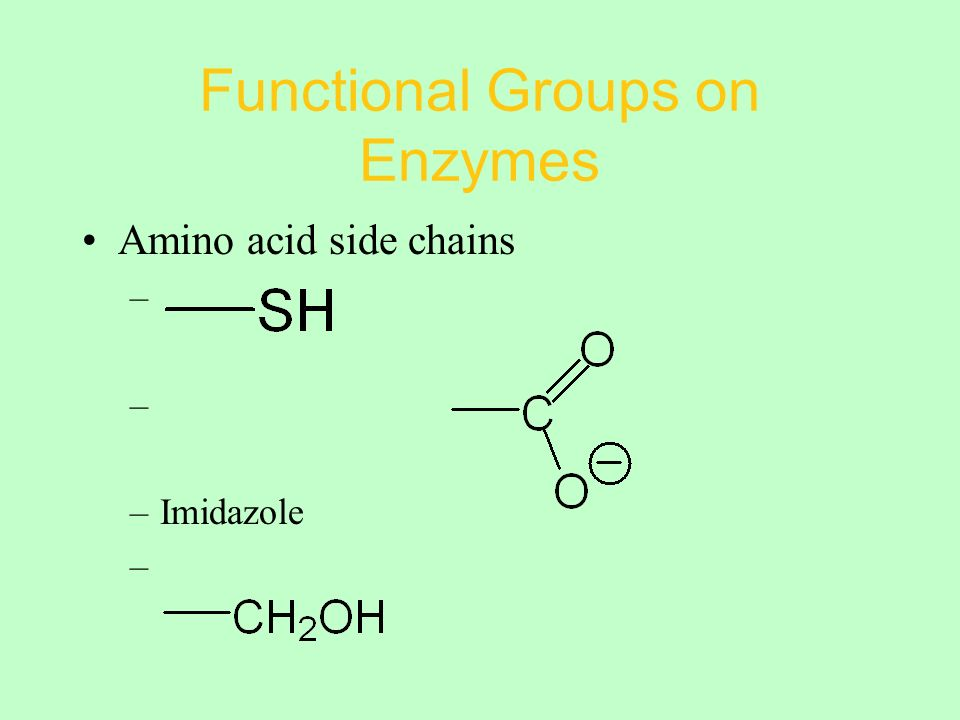Functional Groups on Enzymes Amino acid side chains – –Imidazole –