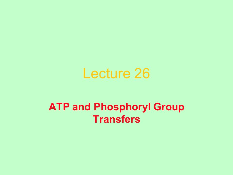 Lecture 26 ATP and Phosphoryl Group Transfers