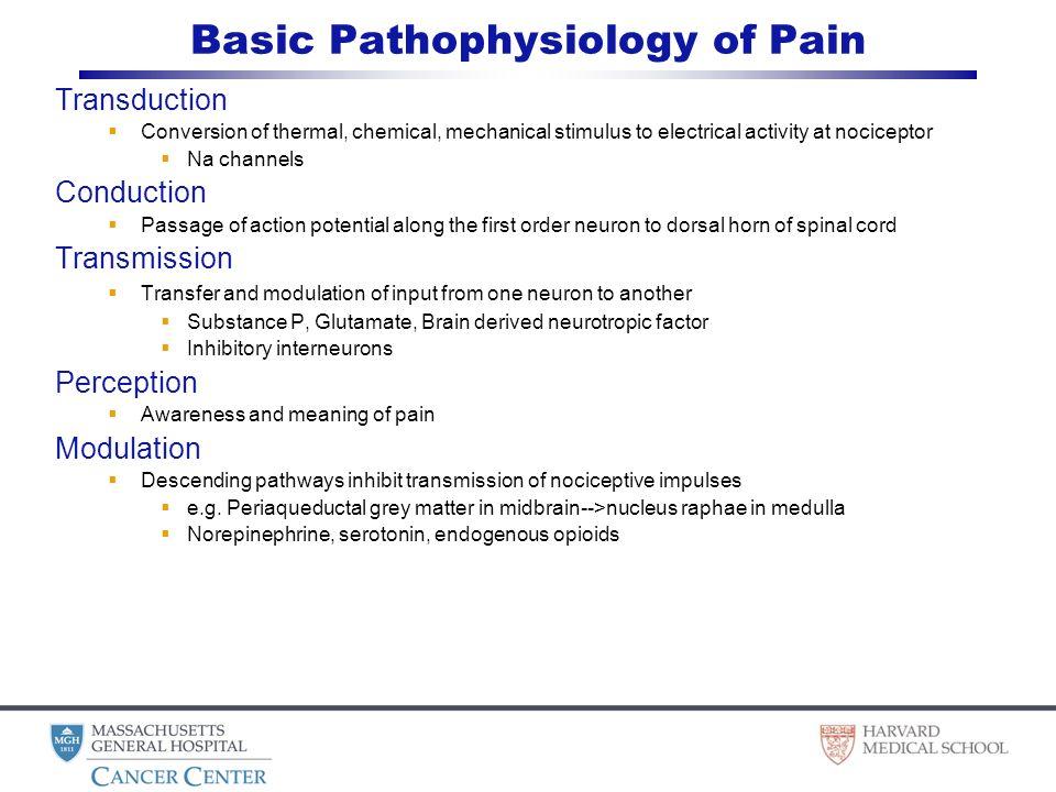 11 Basic Pathophysiology ...