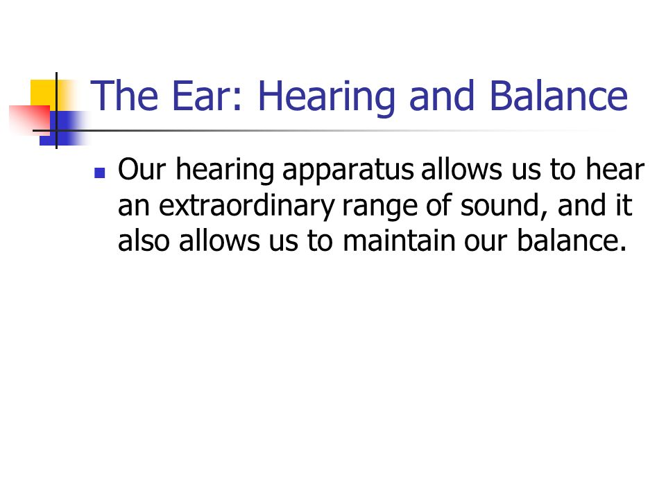 Chapter 8 Special Senses Introduction We are usually told that – The Ear Hearing and Balance Worksheet