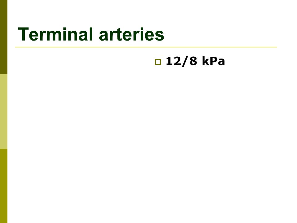 Terminal arteries  12/8 kPa