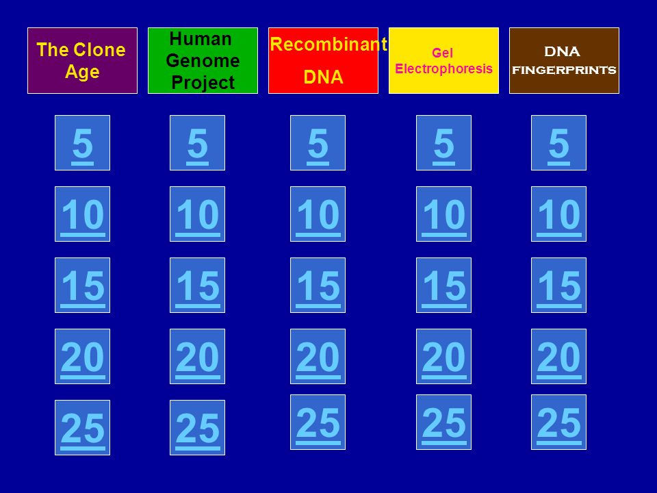 The Clone Age Human Genome Project Recombinant DNA Gel Electrophoresis DNA fingerprints