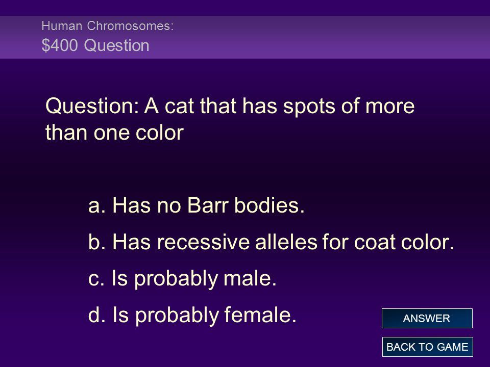 Human Chromosomes: $400 Question Question: A cat that has spots of more than one color a.