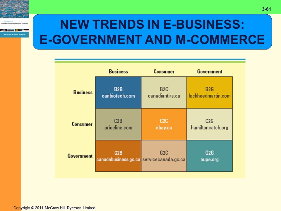2-61 Copyright © 2011 McGraw-Hill Ryerson Limited 3-61 NEW TRENDS IN E-BUSINESS: E-GOVERNMENT AND M-COMMERCE