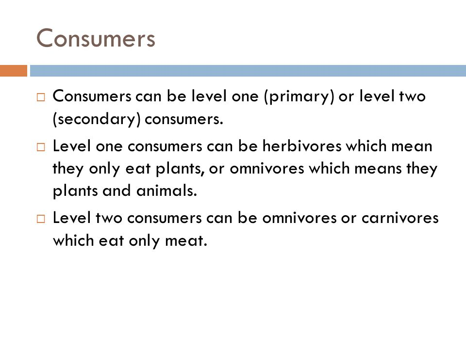 Consumers  Consumers can be level one (primary) or level two (secondary) consumers.